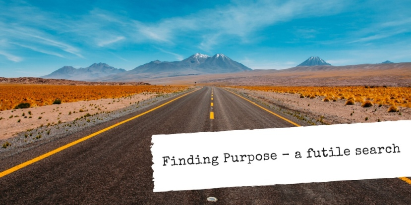 Finding Purpose – a futile search?