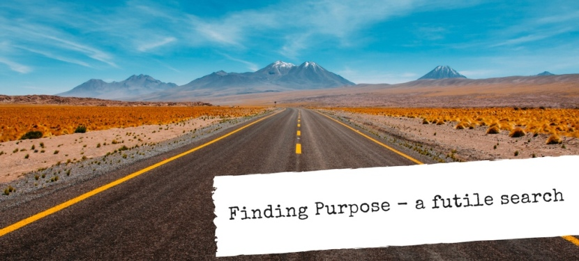 Finding Purpose – a futilesearch?